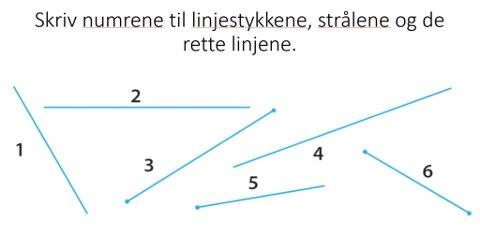 OPPGAVE 10: Skriv numrene til linjestykkene, strålene og de rette linjene.
