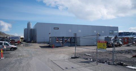 MASSEDØD: En halv million lakseyngel døde i dette anlegget ved Skjervøy. Oppdretteren sier de ikke vet hva som gikk galt.