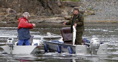 Populært Stangfiske: 67 prosent av all laksen som ble fisket i sommer ble tatt på stang, viser statistikken.Arkivfoto