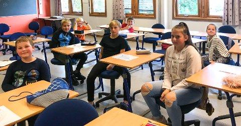 EKSTRA SKOLE: Elevene på denne skolen bruker noen timer ekstra ved pultene hver uke for å holde morsmålet sitt ved like.