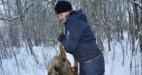 RÅDYR PÅ MENYEN: Jon Petter Bergsrud med et trafikkdrept rådyr fra fallviltgruppa. Det ble til mat for gaupeungene.