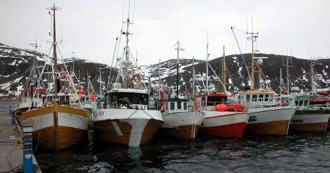 KAN BLI FULLT: Det kan bli fullt av båter i Kjøllefjord havn som skal levere sin del av den såkalte «Mehamn-kvota.» Fisket kan starte 1. mai. All fangst må leveres fersk.Foto: Øystein Ingilæ