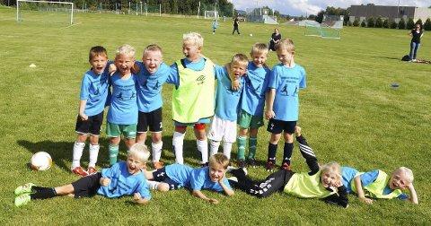 Fornøyde seksåringer: Disse seksåringene poserte villig for et lagbilde da Aurskog-Finstadbru SKs fotballskole gikk av stabelen i helgen.Begge foto: Lene Barkenæs Svea