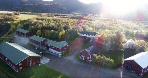 Meningsfylt liv: – Gården har både krevd mye og gitt mye. Den har først og fremst gitt oss et godt og meningsfylt liv. Sterke opplevelser. Mye lærdom. Gode kollegaer og naboer. Den har vært en god heim og en god plass å vokse opp på, skriver Thor Holand på sin Facebook-side. Dronefoto: Thor Holand