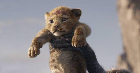 «Løvenes konge» reddet sommeren på Bergen kino, og ble totalt sett av 45.518. Foto: Filmweb