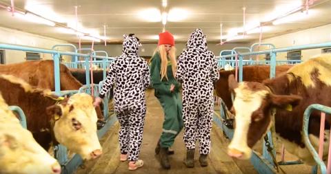 Ungdommane sler seg laus i musikkvideoen.