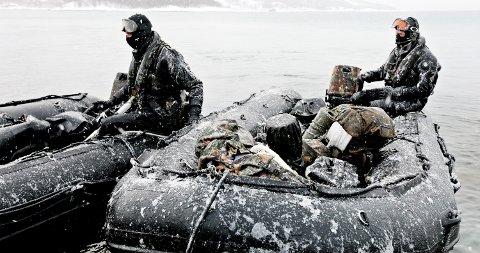 Cold Response 2010  Royal Marines og US Marine Corps raidet Bogen i Ofoten under øvelse Cold Reponse. Ved hjelp av landgangsfartøyer ble beltevogner og soldater satt i land på stranden, slik at amfibiesoldatene kunne erobre Bogen fra sjøveien. Foto: LARS MAGNE HOVTUN, FORSVARET