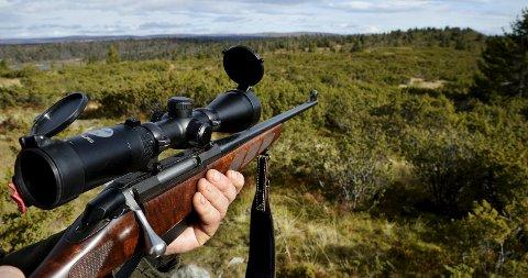 Må møte i retten: En elgjeger må møte i retten i august etter at han skadeskjøt en ulv innenfor Snultra, i nærheten av Matfartjernet, som sees til venstre i bildet, i høst.