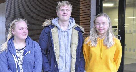 Kjenner seg ikke igjen: Victoria Lovise Markussen (17), Johan Teigen Bless (17) og Julia Marie Jørgensen (18) kjenner seg ikke igjen i medias framstilling av ungdomsmiljøet den siste tiden, hvor temaer som rus, overgrep og klikkdannelser har vært i fokus. Foto: Synne Mauseth
