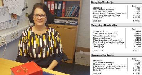 SMÅKRAV: Seksjonssjef Monica Lægreid ved Moss politistasjonsdistrikt i Øst politidistrikt sier at mange som jobber med statlig innkreving gjennom namsmannen, er oppgitt over den kraftige økningen i antall småkrav. Eksemplene til høyre viser hvordan småkrav vokser til betydelige beløp. Foto: Politiet (Politiet/Nettavisen)