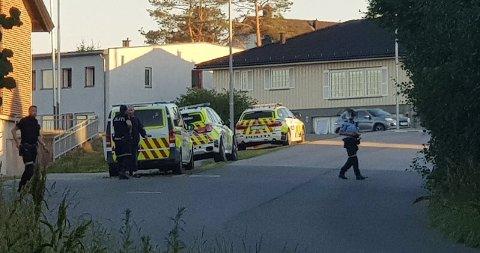 Politiet rykket mannsterke ut da meldingen kom at en mann som var i konflikt med sin nabo, hadde bevæpnet seg med kniv.
