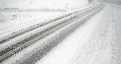 MYE SNØ: Det snør godt på Kvikne fredag formiddag. Et vogntog har kjørt av vegen og veltet.