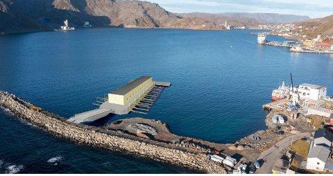 Dette 3D bildet viser hvordan man ser for seg plasseringen av den nye sjarkhavnen i Honningsvåg.