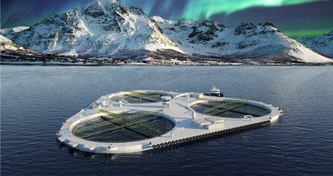 NSK Ship Design og Salaks fikk gode råd fra studentene ved UiT Narvik til utformingen av fremtidens oppdrettsanlegg.