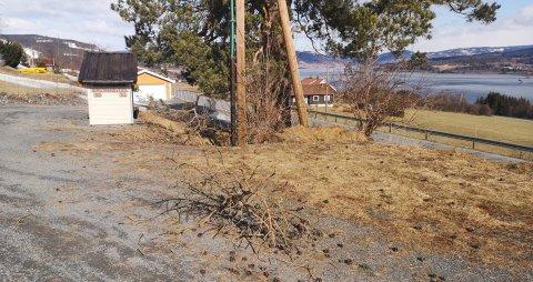 Sterk vind: Det var krefter i vinden som herjet på Biristrand i natt.