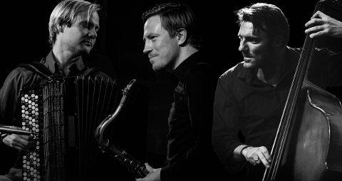TRIO: I kveld kan du oppleva denne spennande trioen i Baroniet Rosendal. (Pressefoto).