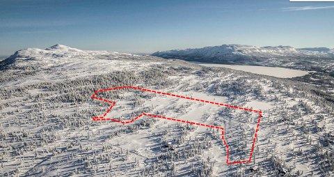 NYTT: Planen for utbygging ved Skjærbrekka på Vegglifjell omfatter 23 hytter.