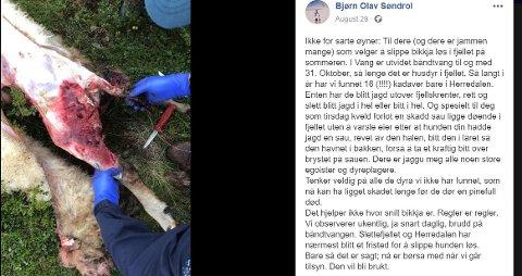 VAKTE OPPSIKT: Denne facebook-meldingen som Bjørn Olav Søndrol oppfordrer folk om å ha hundene sine i bånd.
