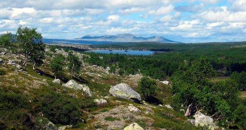 Femundsmarka nasjonalpark er foreslått utvidet. Arkivfoto: Roald Evensen