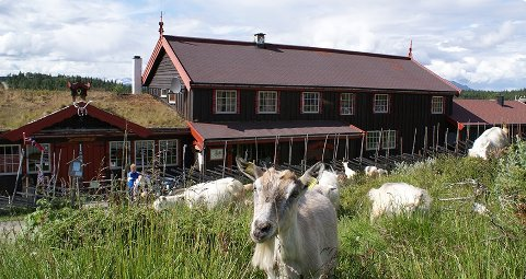 IDYLL: Vangsjøen fjellstue ligger idyllisk til, og venter nå på nye eiere.