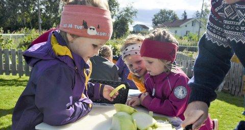 VELLYKKET: I vår ble prosjektet «Vi dyrker landet – grønne barnehager i Innlandet» satt i gang og i disse dager får barnehageunger i hele distriktet smake på resultatet av egendyrkede grønnsaker. Søstrene Johanne og Marthe Røe- Dufseth og Thea Johansen i Skramstad barnehage venter spent på at Hilde Svendsberget Nilsen skal få kuttet opp grønnsakene.