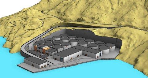 LANGS FJORDEN: Slik vil Norwegian Seafarming at det nye landanlegget skal bygges i Ramsvika.
