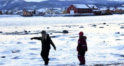 1: Jenny Bekkavik og Åsta Ånes var de yngste som deltok på onsdagsturen til Marsøra i Vefsn denne uka. – Det er gøy å dra på tur, spesielt når det er hunder med, sier Jenny på ni år.  2: Ivar Lyftingsmo, Olaf Fagereng og Reidar Lundestad sørger for bålkaffen.  3: Nytt år, nye muligheter. Olaf Fagereng gjør seg klar til sin første onsdagstur.  4: Bæsjpose er obligatorisk når Staal Lie har med seg hund på tur.  5: Steinar Brubakk og resten av gjengen i fint driv mot Marsøra.  6: Ingen tur uten bålkaffe.  7: Sosialt rundt langbordet. F-v.: Synnøve Granås, Anny Andersen, Gjertrud Paulsen, Per Bardo Jakobsen, Øystein Martinsen, Staal Lie, Arild Kongsvik, Steinar Brubakk og Randi Greger Nilsen.  8: Hurra, det er vinter!