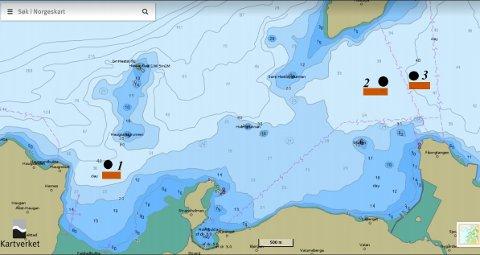 TEST-PLASSERINGER: Ocean Tunicell AS søker om midlertidig dispensasjon for testanlegg for tunikater (kappedyr) utenfor Falstadbukta (1) ved Ekne, og Fiborgtangen (2 og 3) ved Skogn.