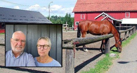 TILTAK: Ekteparet Lars og Mona Lønne ønsker at kommunen iverksetter tiltak for å bedre sikkerheten på gården der Mona og barnebarnet ble løpt ned av en hest. Hun sliter fortsatt med skader etter ulykken.