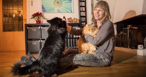 KATTEVENN: – Vi håper på en håndsrekning fra kommunene, sier Irene Halvorsen Maalen. Her med sine egne katter, Silke og Pusur. Begge foto: Vidar Sandnes