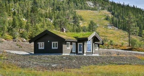 SELGES: Denne hytta har veltet et byggefirma i Vestfold. Den er fortsatt til salgs. Foto: Midthusbygg/Privatmegleren