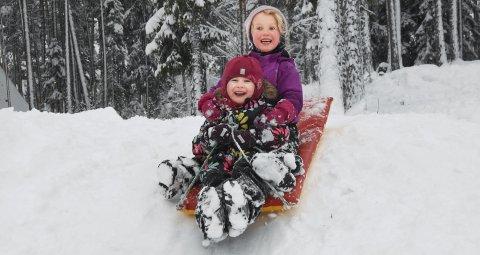 Hei hvor det går: Lina Høgsnes Haugholt og Eira Mork setter utfor kanten og fyker nedover den lille, bratte akebakken. Da kiler det skikkelig godt i magen hos de to femåringene.