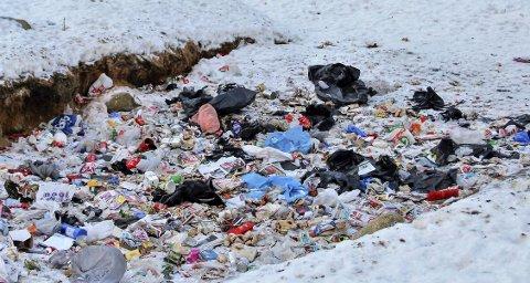 Slik ser det ut: Her skulle det bare vært deponert matavfall. Det er på langt nær virkeligheten. Alt mulig slags søppel er lagt i fyllinga, og så har vind og fugler bidratt til å spre dette ut over et stort område. Foto: Ann Kvanmo
