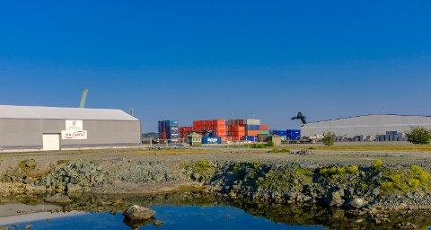 Karmsund havn, her fra Husøy, kan i framtiden måtte dele overskuddet med eierkommunene. Foto: Terje Størksen