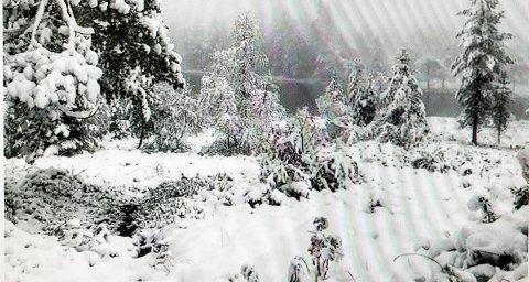 Vinteren kom: Slik så det ut på Skrim fredag. Foto: Privat