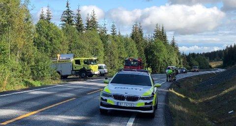 UTFORKJØRING: Politiet var raskt på stedet da en bil havnet i grøfta på fylkesveg 33 i Vardal.