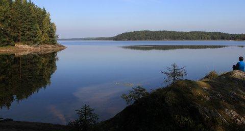 IMG_5727.JPG STORE ERTEVANN: Området preges av mange store sjøer. Dette er fra Store Ertevann i Ankerfjella.