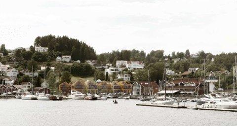 TRANSFORMERES: Vollen Marina ønsker å transforere dette området til å bli en utvidet del av Vollen sentrum. (Illustrasjon: Frost arkitekter AS/ESAadmin)