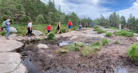 IKKE: Det er nå klart at det ikke blir noen utredning av nasjonalpark i Preikestolområdet. Arkivfoto: Elin Moen Karlsen