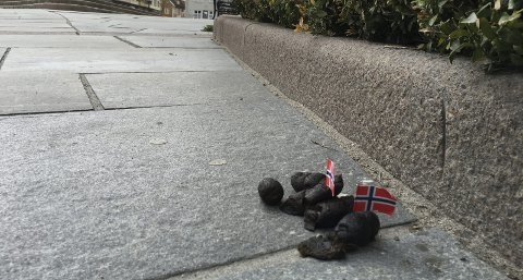 Skikkelig drittsak: Gjennom flere år er hundebæsjen gjort ekstra synlig med norske flagg før den fjerne, og det får faktisk hundeeierne til å skjerpe seg.Foto: Pål Brikt Olsen