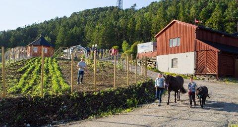 IDYLL: Den nye 4H-garden tilbyr mange aktivitetar for barn og unge.