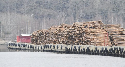 BØR STENGES: Kaifronten på Ytre Mølen er så dårlig at området bør tømmes for tømmer og stenges, er anbefalingen i den nylig mottatte havneanalysen. Tirsdag skal havnestyret ta stilling til denne anbefalingen.