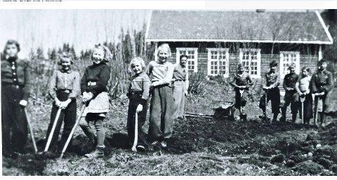 KJØKKENHAGE: Elevene ved Bottolvs skole jobber i skolehagen i 1942. Fra venstre: Mary Glitre (g. Gustavsen), Solveig Glitre (g. Utengen), Edith Rasmussen (g. Thorrud), Karin Glitre (g. Midtskog), Ruth Helgesen (g. Høln), lærer Aasmund Slaatelid, Åge Helgesen, Åge Damhagen, Finn Helgesen, Helge Damhagen, Rolf Helgesen.