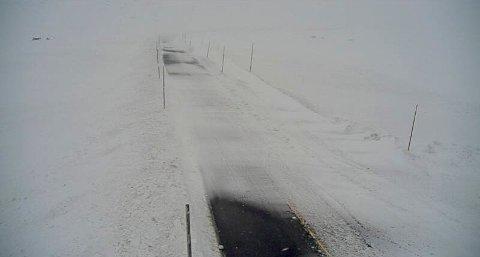 Snødekt riksveg 7 ved Skulevika på Hardangervidda mandag. Rv. 7 over Hardangervidda var mandag stengt for kjøretøy med totalvekt under 7,5 tonn, mens det ble kjørt kolonnekjøring for kjøretøy over. Foto: Statens vegvesen webkamera / NTB scanpix