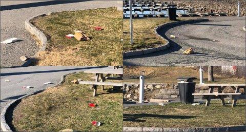 FLYTER: Dette er noen av bildene som nå deles på Facebook, og som viser et eksempel på hvordan det kan se ut i båthavna en vanlig morgen.