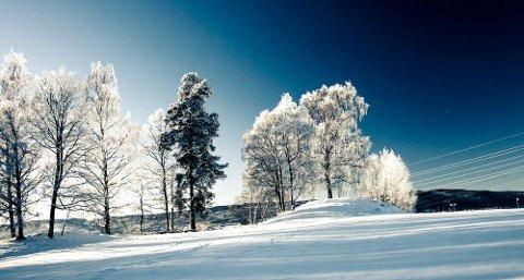 Det blir kanskje ikke så mye snø, men kos skal vi sørge for!