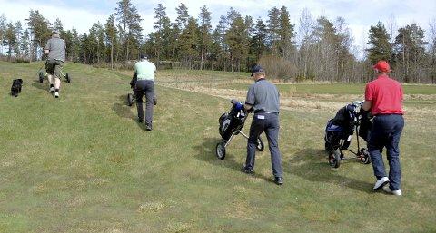 Frykter Frost: Golfklubben ber nå turgåere og andre om å ikke trå i gresset når det blir frost.Foto: Per Langevei