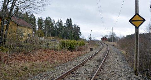 USIKRET OVERGANG: Dette skiltet ved Gutu i Eidsberg forteller at toget nærmer seg en usikret planovergang og at her skal det tutes.ARKIVFOTO