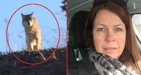 LYKKELIG ULVEMØTE: Eileen (49) jubler etter å ha sett ulv i Indre Østfold.