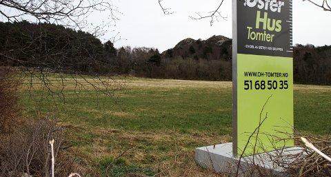 Østerhusgruppen ønsker å bygge ut et nytt boligfelt på Haga i Tananger, men foreløpig må de smøre seg med tålmodighet. De kan ikke starte før kommunedelplanen for Risavika er på plass.